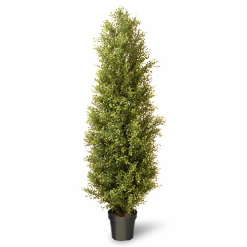National Tree Company 72 Inch Argentia Artificial Plant Tree with Green Pot Perspective: front