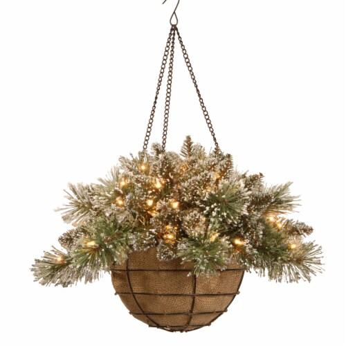 National Tree GB3-300-20H-B1 Glittery Bristle Pine Hanging Basket With Pine Cones, 20 in. Perspective: front