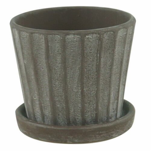 Border Concepts Mini Standard Pot with Attached Saucer - Assorted Perspective: front