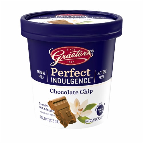 Graeter's Perfect Indulgence Chocolate Chip Animal Free Dairy Frozen Dessert Perspective: front