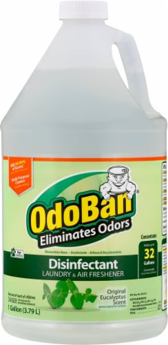 Odoban Eucalyptus Concentrate Disinfectant Perspective: front