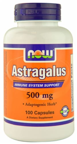 NOW   Astragalus Perspective: front