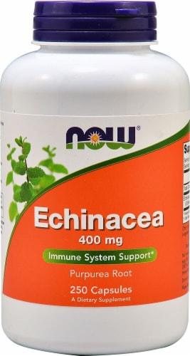 NOW Foods  Echinacea Perspective: front