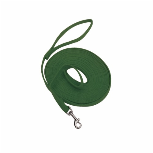 Alliance 6-Inch Green Cotton Web Training Lead Perspective: front