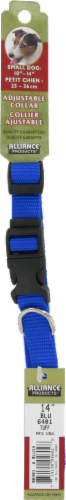 Alliance Blue Small Dog Collar Perspective: front