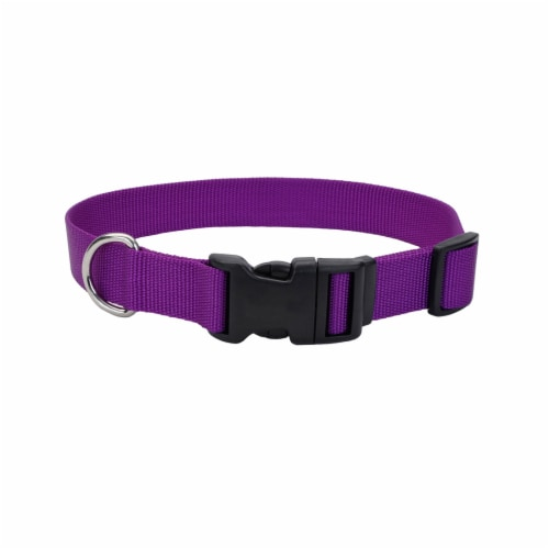Alliance Tuff Dog Collar - Purple Perspective: front