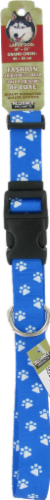 Alliance Large Blue Paw Print Collar Perspective: front