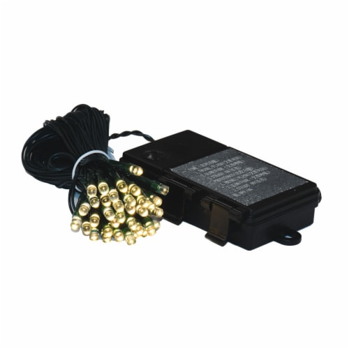 50Lt BO WmWht/Gw LED Outdoor Timer Set Perspective: front