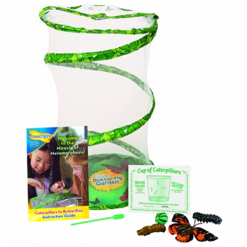 Insect Lore Giant Butterfly Garden Deluxe Growing Kit Perspective: front