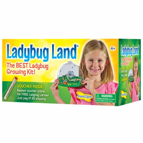 Insect Lore Ladybug Land Growing Kit Perspective: front