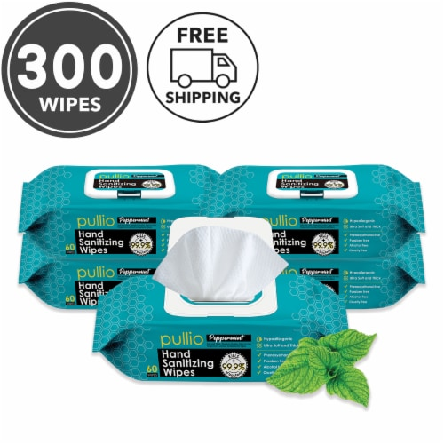 pullio - 5 Packs of Hand Sanitizer Wet Wipes 60ct - Peppermint Antibacterial Hand  Wipes Perspective: front