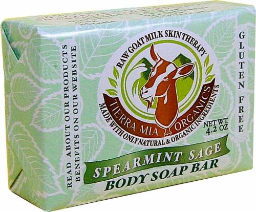 Tierra Mia Organics Body Soap Bar Spearmint Sage Perspective: front