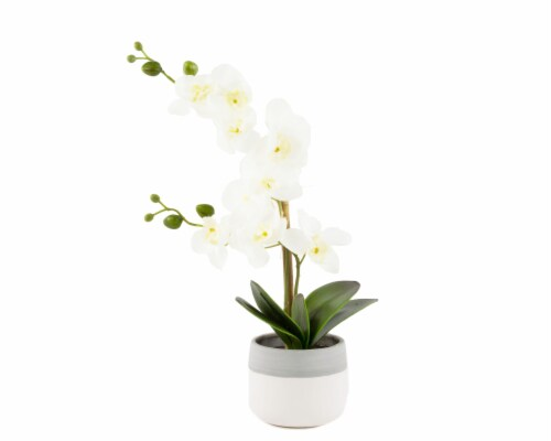 Silkcraft Orchid in Bowl - Gray/White Perspective: front