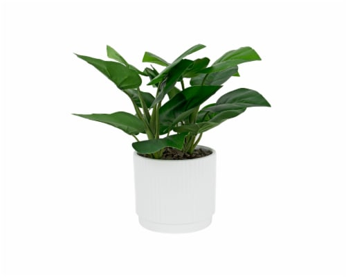 Silkcraft Artificial Medium Philo with Ribbed Pot Perspective: front