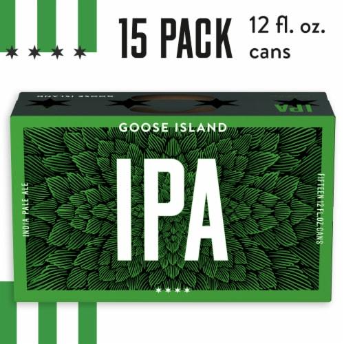 Goose Island IPA Beer Perspective: front
