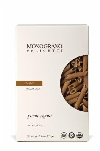 Monograno Felicetti Organic Farro Penne Rigate Perspective: front