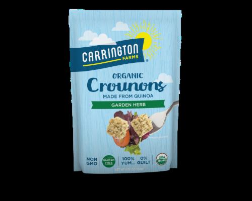 Carrington Farms Gluten Free Garden Herb Organic Crounons Perspective: front