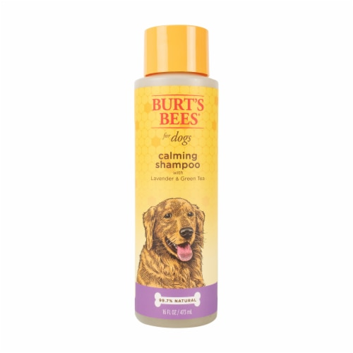 Burt's Bees Lavender & Green Tea Calming Shampoo for Dogs Perspective: front
