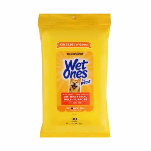 Wet Ones for Pets Tropical Splash Antibacterial Multipurpose Wipes Perspective: front
