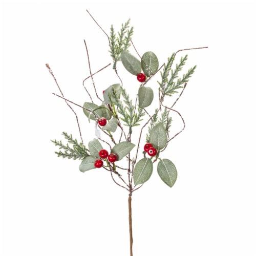 Cedar/Leaf/Berry Pick (Set of 24) 16.5 H EVA Perspective: front