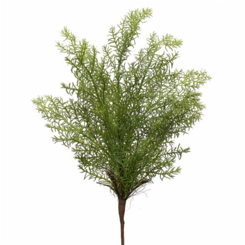 Asparagus Fern (Set of 24) 17 H Plastic Perspective: front