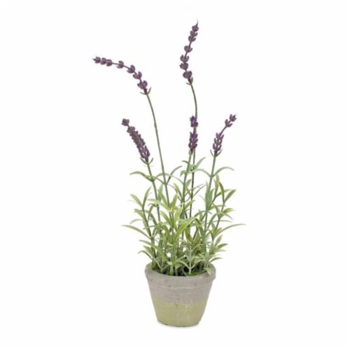 Potted Lavender (Set of 6) 13.5 H Plastic Perspective: front