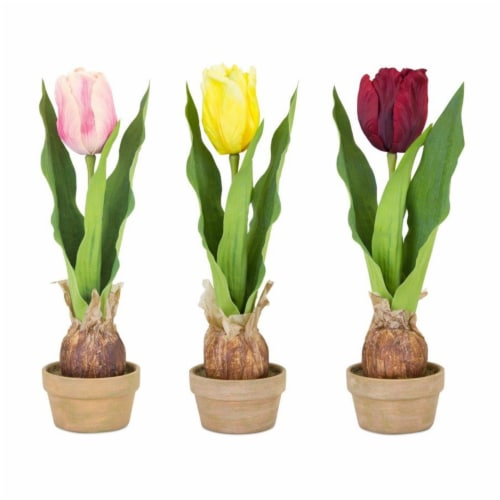 Potted Tulip Bulb (Set of 3) 5.5 L x 13.75 H Polyester/Ceramic Perspective: front