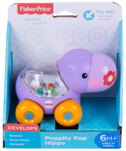 Fisher-Price® Poppity Pop Toy - Assorted Perspective: front