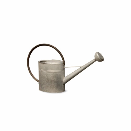 National Tree  18 in. Metal Watering Can - Zinc Perspective: front