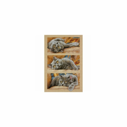 Max The Cat Counted Cross Stitch Kit-10''X15'' 14 Count Perspective: front
