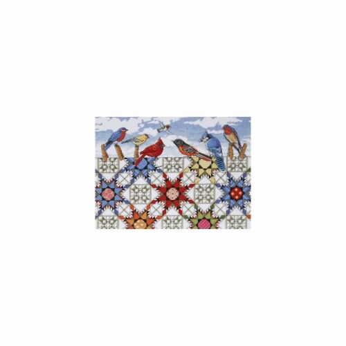 Feathered Stars Counted Cross Stitch Kit-12''X16'' 14 Count Perspective: front