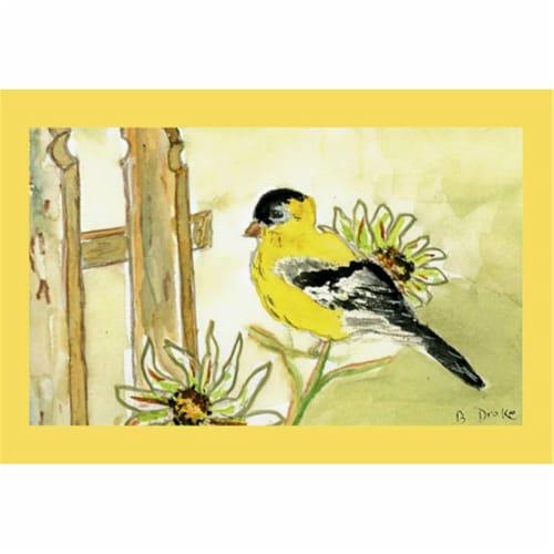 Betsy Drake DM244 Goldfinch Door Mat 18''x26'' Perspective: front