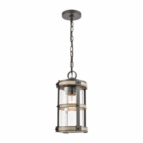 1-Light Outdoor Pendant in Anvil Iron and Distressed Antique Graywood with Seedy Glass Perspective: front