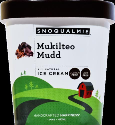 Snoqualmie Mukilteo Mudd Ice Cream Perspective: front