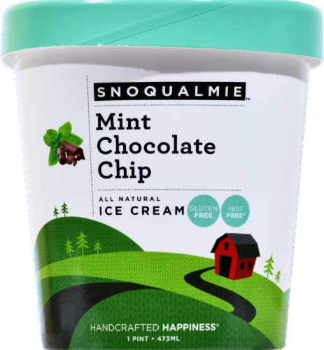 Snoqualmie Mint Chocolate Chip Ice Cream Perspective: front