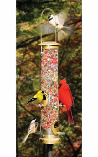 Coles Wild Bird Product Feeder Wild Bird Tube 4 Port Perspective: front