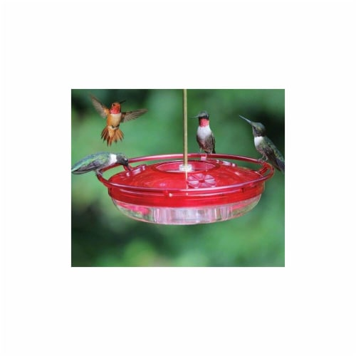 Coles Wild Bird Products Co Hummer High Rise Feeder Perspective: front