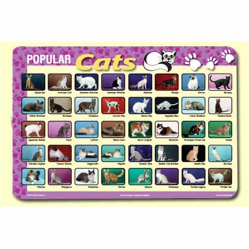 Painless Learning CAT-1 Popular Cats Placemat - Pack of 4 Perspective: front