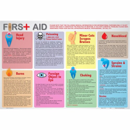 Painless Learning AID-1 First Aid Placemat - Pack of 4 Perspective: front
