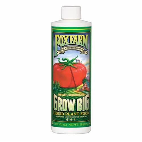Hydrofarm FX14092 Pint Grow Big Liquid Plant Food Concentrate Perspective: front