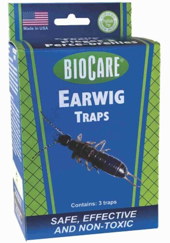 BioCare® Earwig Traps Perspective: front