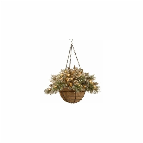 Glittery Bristle Pine Hanging Basket With Pine Cones, 20 in. Perspective: front