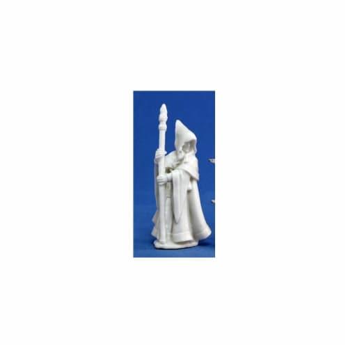 Reaper Miniatures 77068 Bones - Anirion, Wood Elf Wizard Perspective: front
