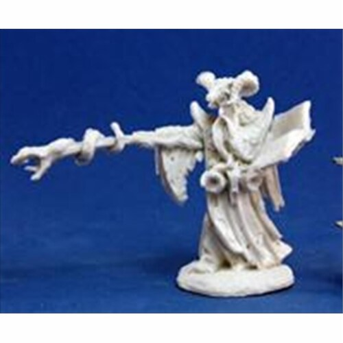 Reaper Miniatures 77174 Bones - Leisynn, Mercenary Mage Perspective: front