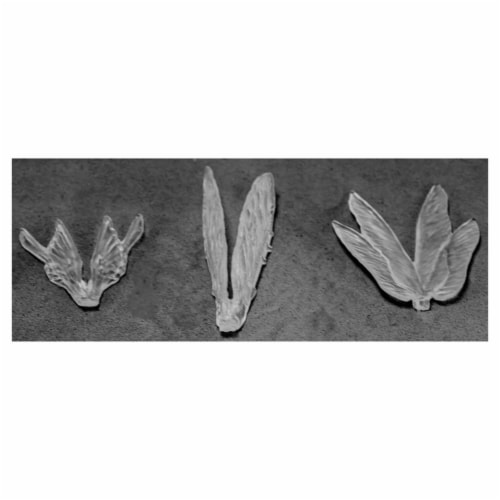 Reaper Miniatures REM77582 Bones - Clear Wings - Pack of 3 Perspective: front