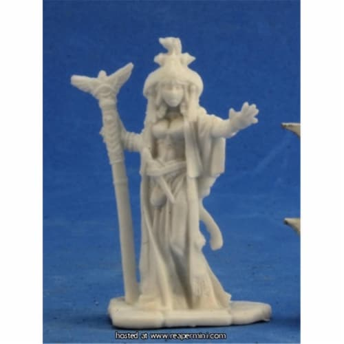 Reaper Miniatures REM89022 25mm Scale Alahazra Iconic Oracle, Julie Guthrie - Pathfinder Bone Perspective: front