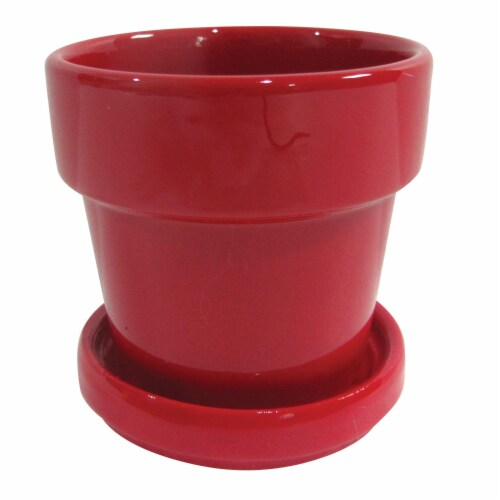 Border Concepts Standard Pot & Attached Saucer - Assorted Perspective: front