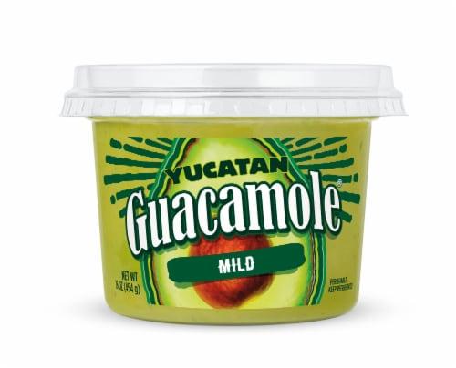 Yucatan Mild Guacamole Perspective: front