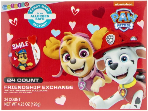 Paw Patrol Friendship Exchange 24 Count Perspective: front