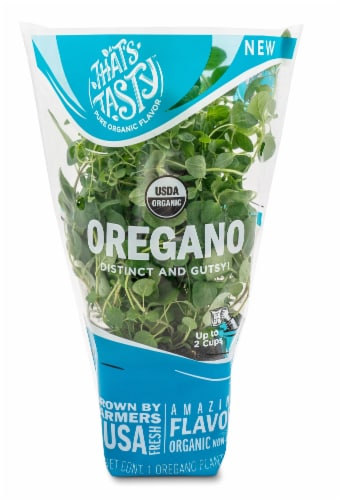 That's TastyOregano Plant Perspective: front